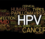 HPV and the HPV Vaccine